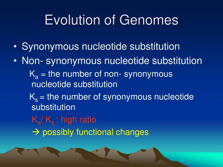 Evolution of Genomes