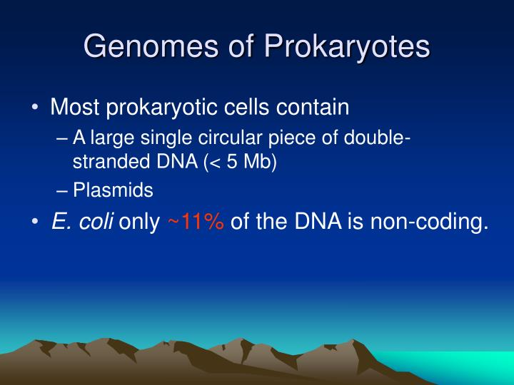 Genomes of Prokaryotes
