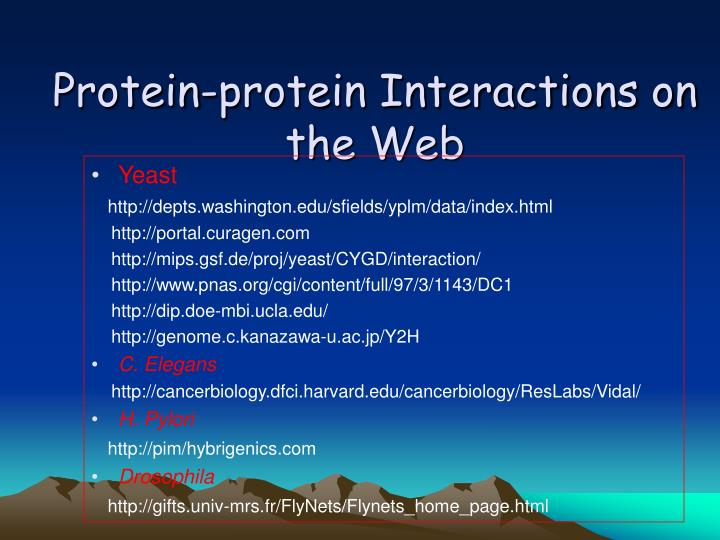 Protein-protein Interactions on the Web