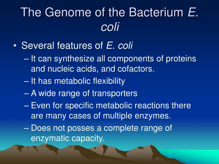 The Genome of the Bacterium