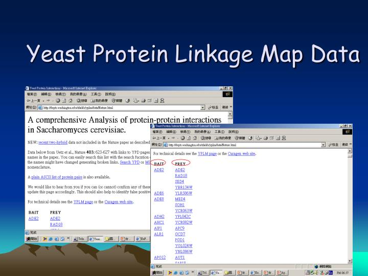 Yeast Protein Linkage Map Data
