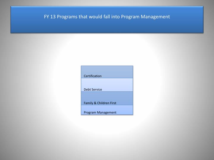 FY 13 Programs that would fall into Program Management