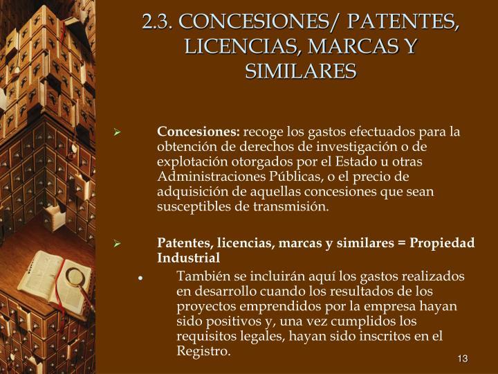 2.3. CONCESIONES/ PATENTES, LICENCIAS, MARCAS Y SIMILARES