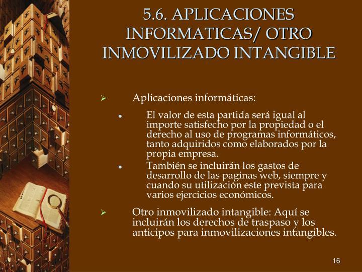 5.6. APLICACIONES INFORMATICAS/ OTRO INMOVILIZADO INTANGIBLE