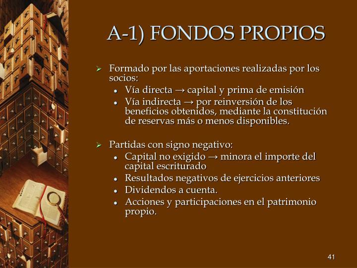 A-1) FONDOS PROPIOS