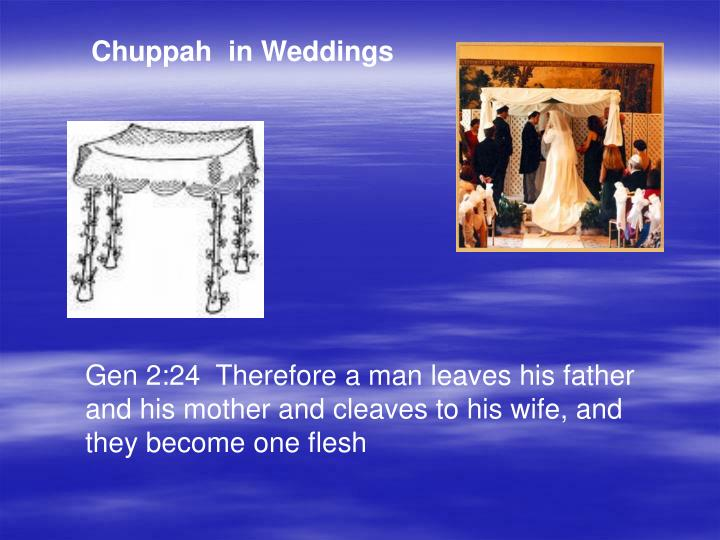 Chuppah  in Weddings
