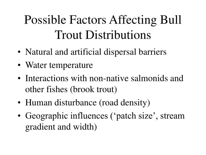 Possible Factors Affecting Bull Trout Distributions