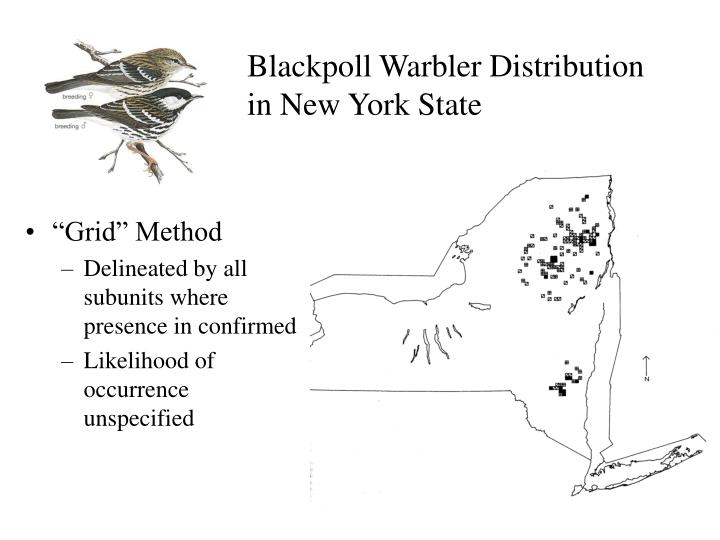 Blackpoll Warbler Distribution in New York State
