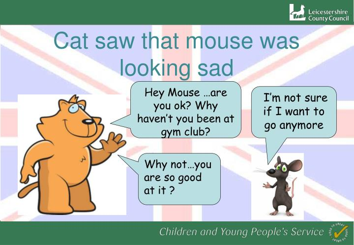 Cat saw that mouse was looking sad