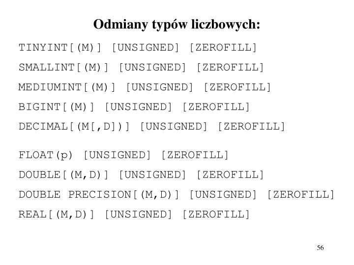 Odmiany typów liczbowych: