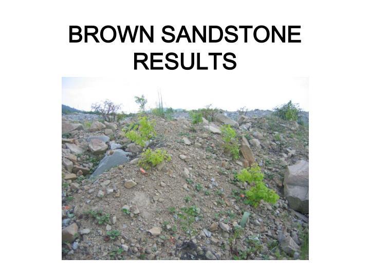 BROWN SANDSTONE RESULTS