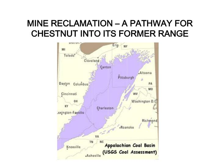 MINE RECLAMATION – A PATHWAY FOR CHESTNUT INTO ITS FORMER RANGE