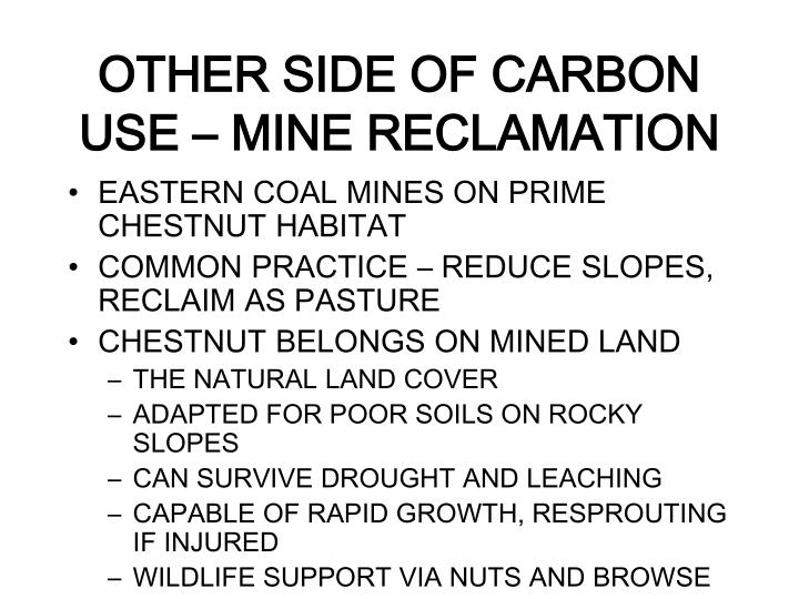 OTHER SIDE OF CARBON USE – MINE RECLAMATION