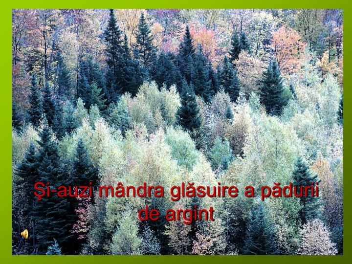 Şi-auzi mândra glăsuire a pădurii de argint
