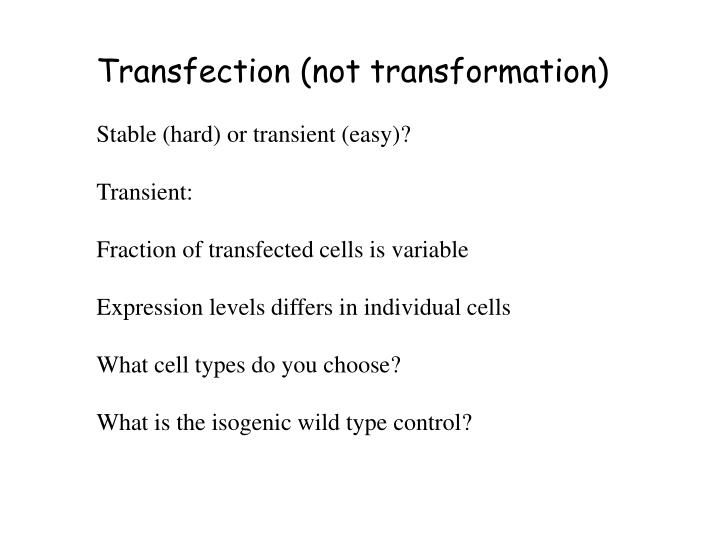 Transfection (not transformation)