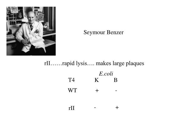 Seymour Benzer