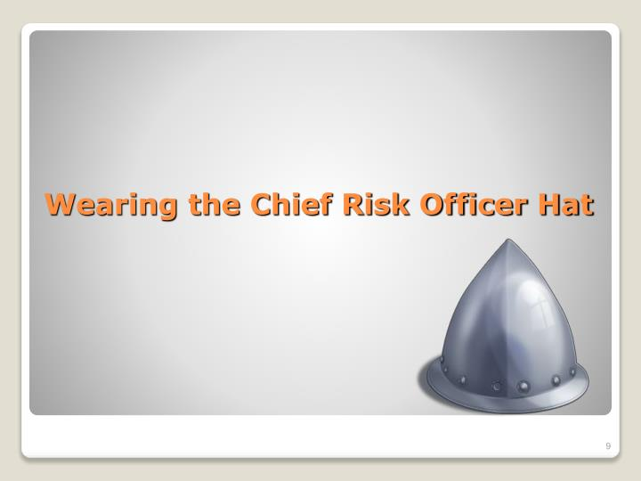 Wearing the Chief Risk Officer Hat