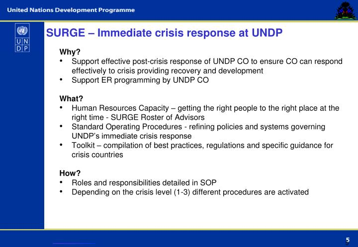 SURGE – Immediate crisis response at UNDP