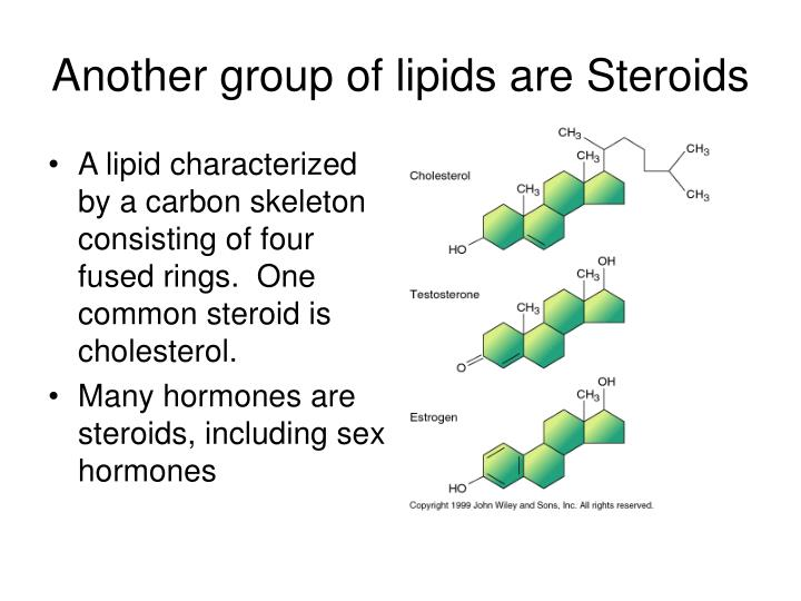 Another group of lipids are Steroids