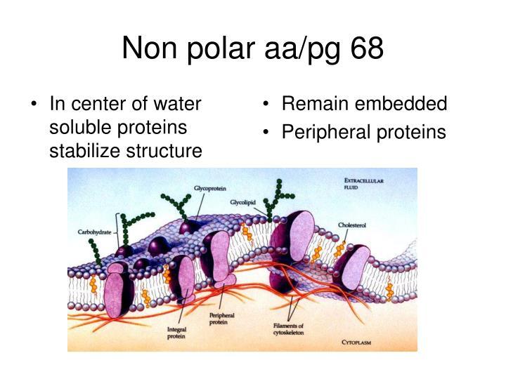 Non polar aa/pg 68
