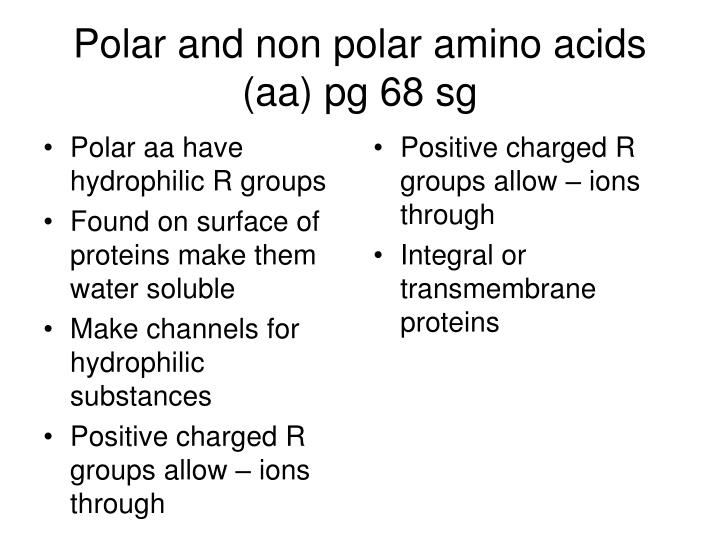 Polar and non polar amino acids (aa) pg 68 sg