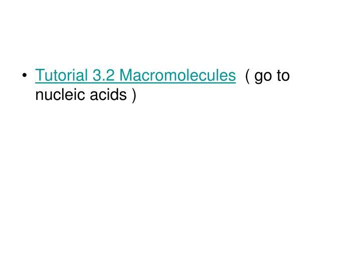 Tutorial 3.2 Macromolecules