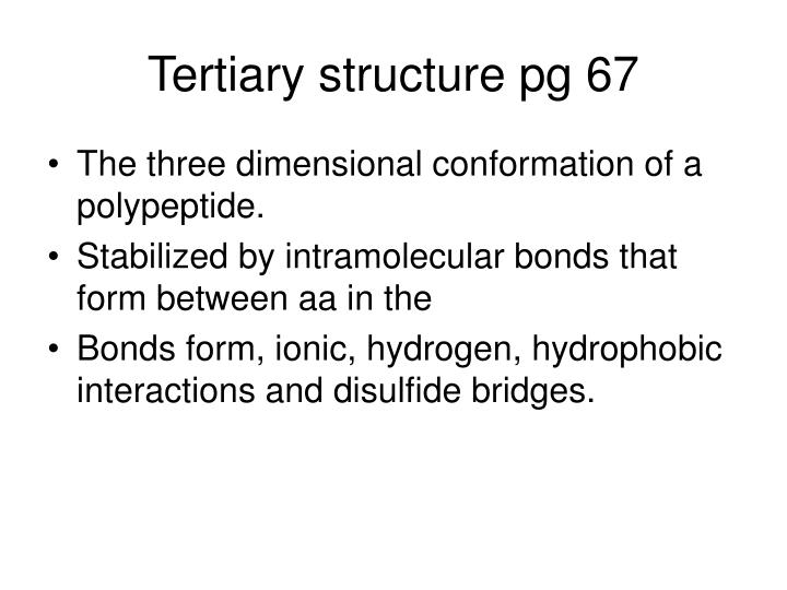 Tertiary structure pg 67