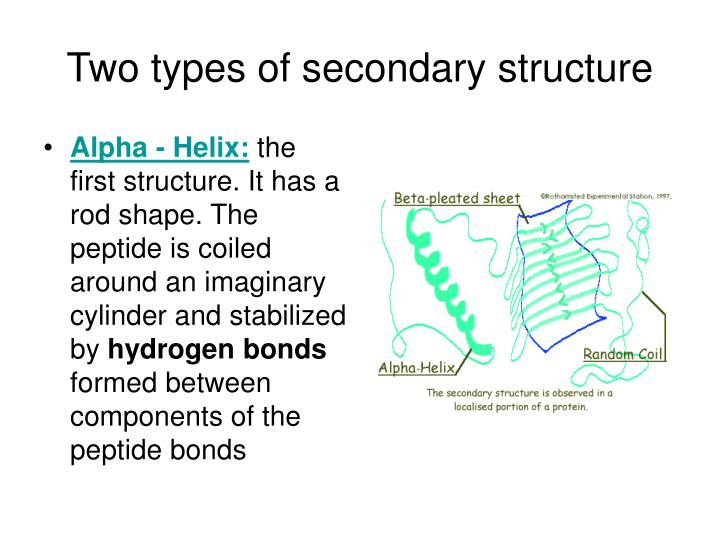Two types of secondary structure