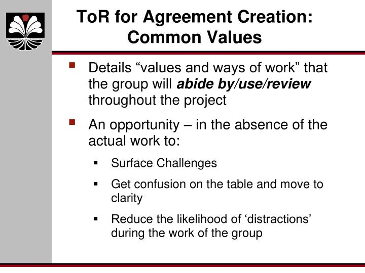 ToR for Agreement Creation: Common Values