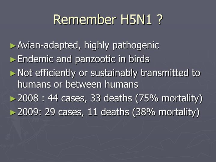 Remember H5N1 ?