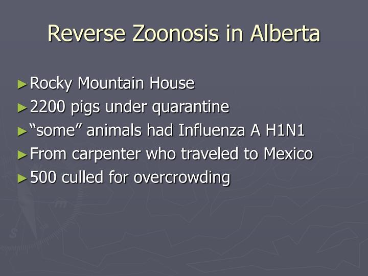 Reverse Zoonosis in Alberta