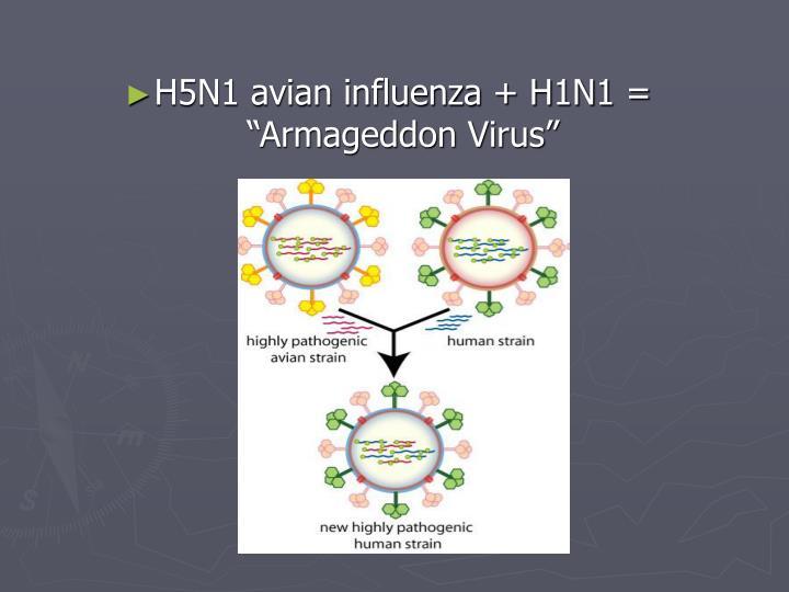 "H5N1 avian influenza + H1N1 = ""Armageddon Virus"""