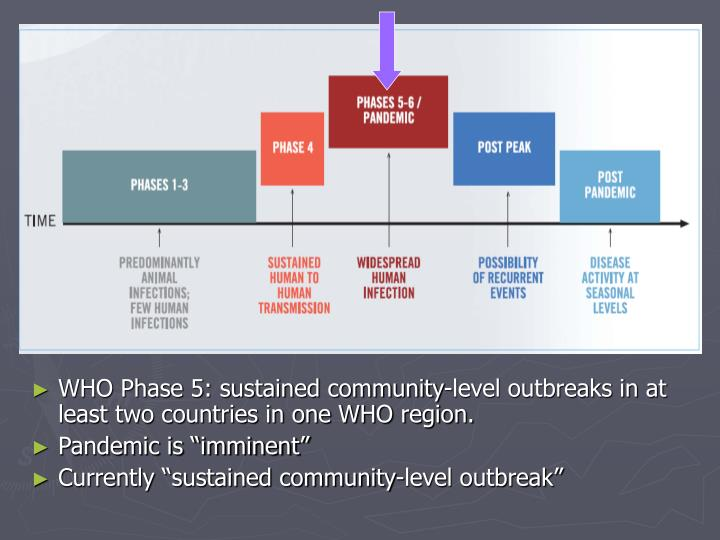 WHO Phase 5: sustained community-level outbreaks in at least two countries in one WHO region.