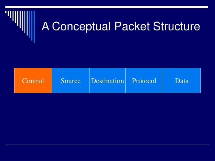 A Conceptual Packet Structure