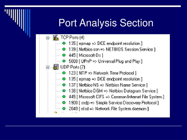 Port Analysis Section