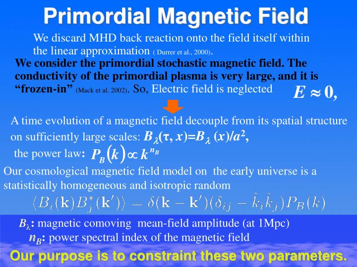 Primordial Magnetic Field