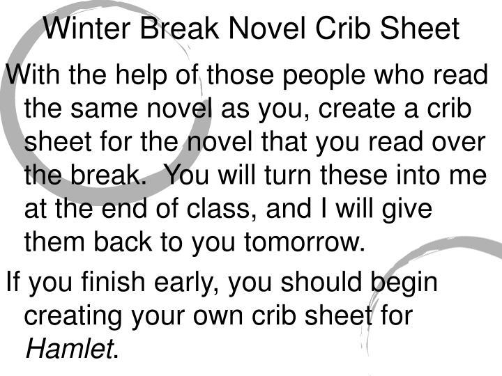 Winter Break Novel Crib Sheet