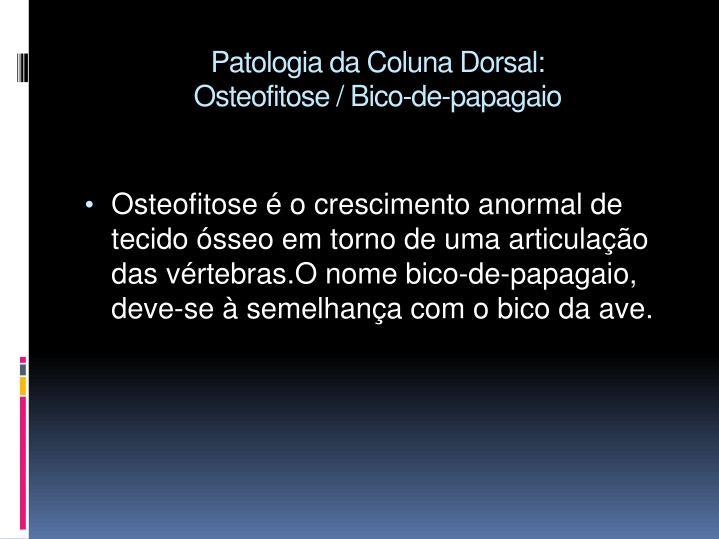 Patologia da Coluna Dorsal: