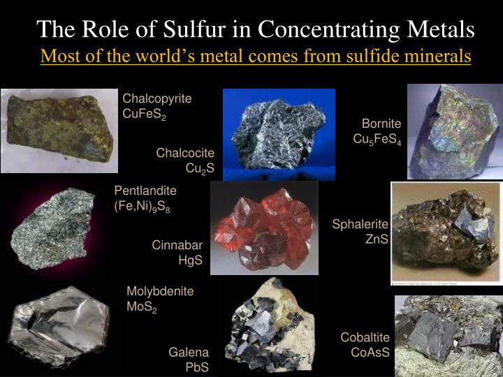The Role of Sulfur in Concentrating Metals