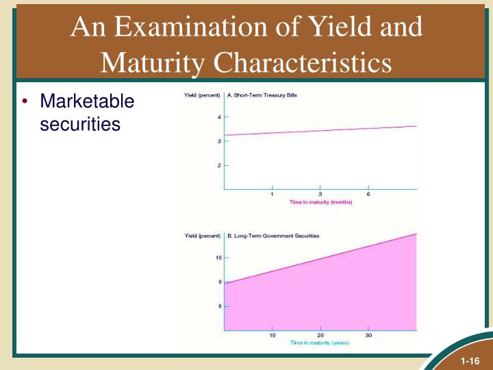 An Examination of Yield and Maturity Characteristics