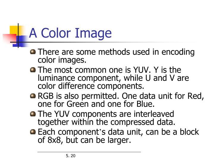 A Color Image