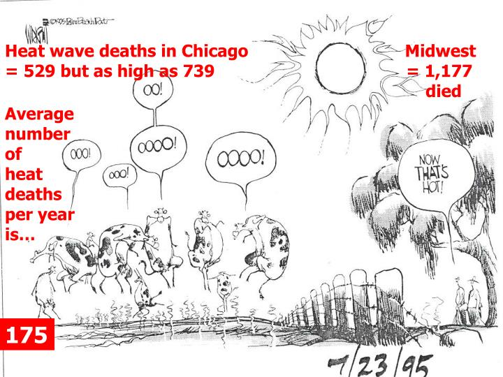 Heat wave deaths in Chicago                                Midwest                       = 529 but as high as 739			          = 1,177 							              died