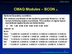 cmaq modules bcon 2