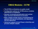 cmaq modules cctm