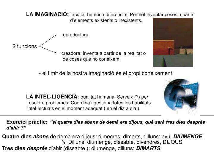 LA IMAGINACIÓ: