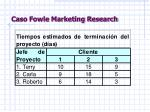 caso fowle marketing research