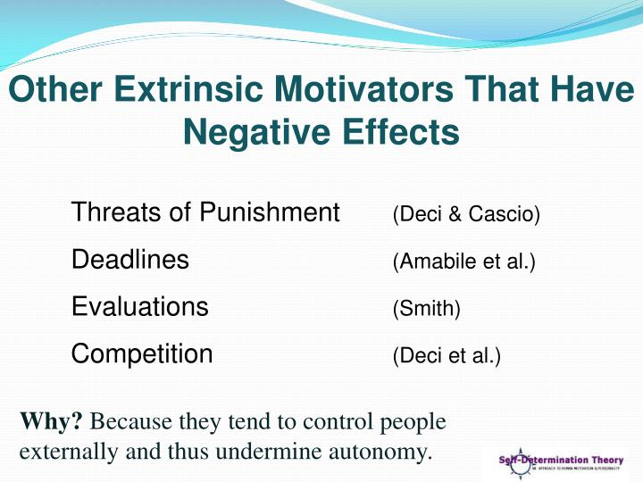 Other Extrinsic Motivators That Have