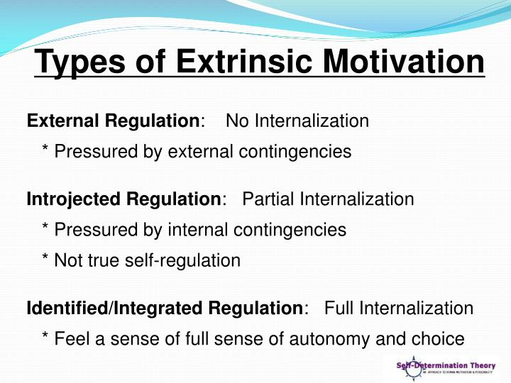 Types of Extrinsic Motivation