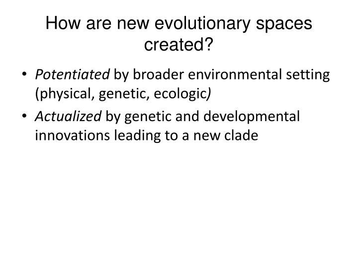 How are new evolutionary spaces created?