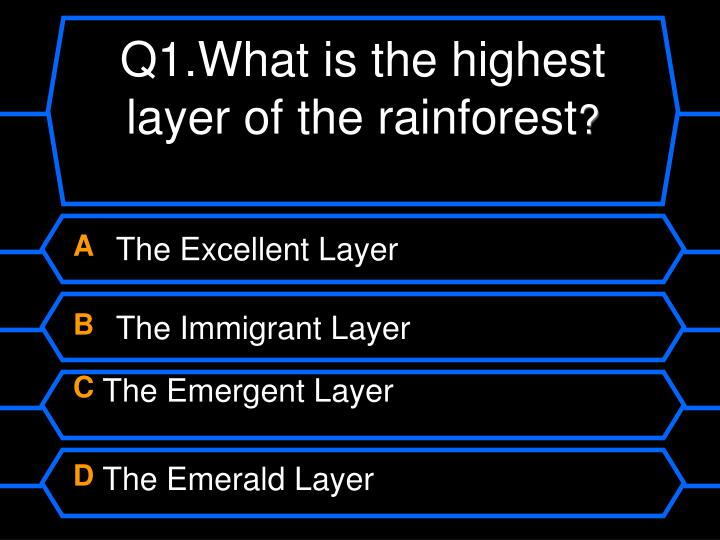 Q1 what is the highest layer of the rainforest